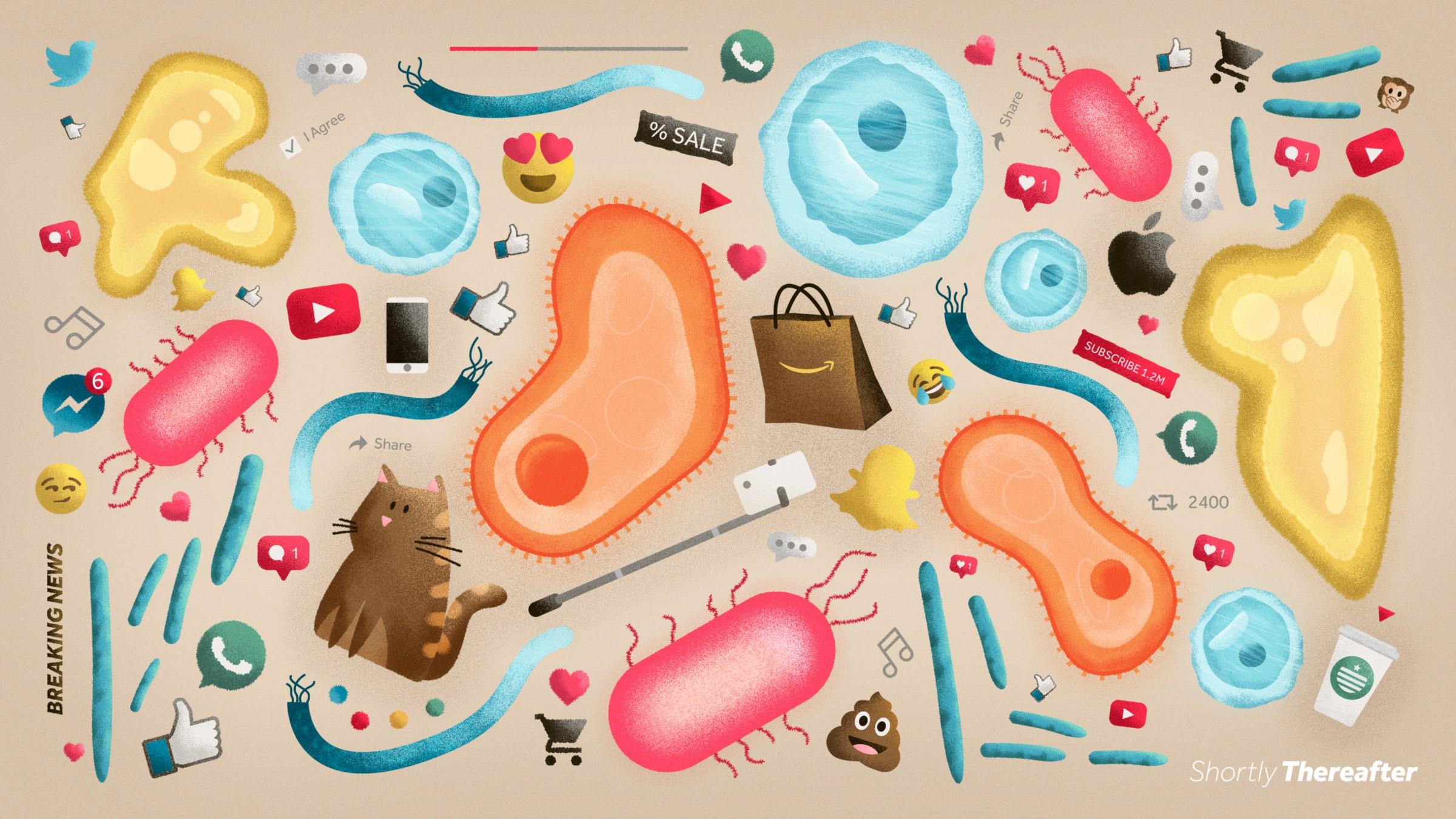 Mix Illustration.jpeg