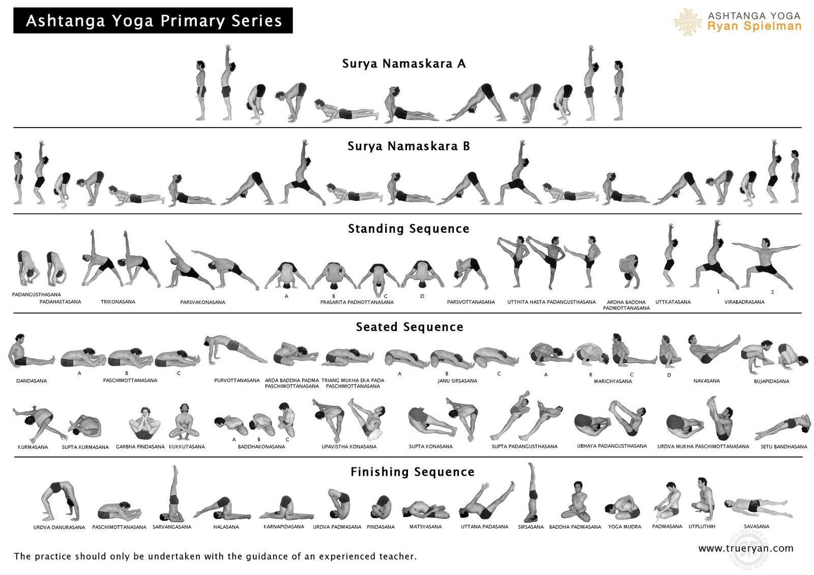 premiere-serie-ashtanga-vinyasa-yoga.jpg
