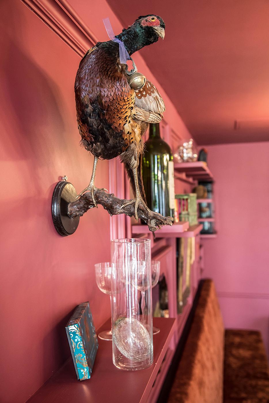 cafe-oulala-close-bird.jpg