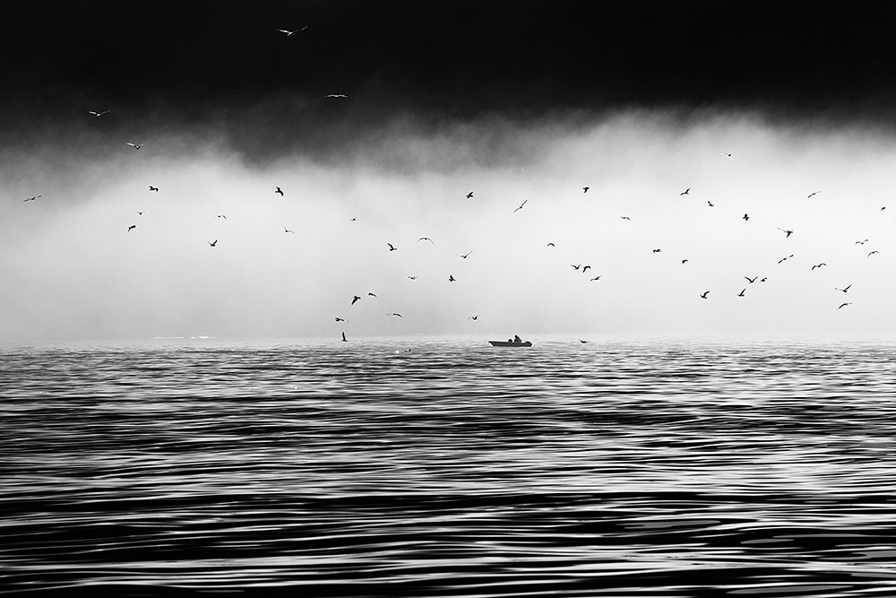 2018-Arctic-Norway-Sailing-IMG_6218.jpg