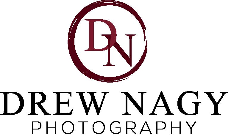 DNS_Logo1.png