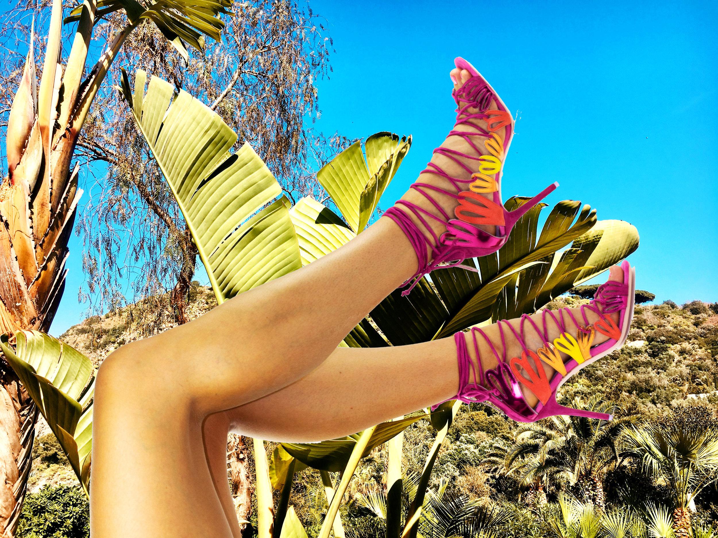 Petal High Palms.jpg
