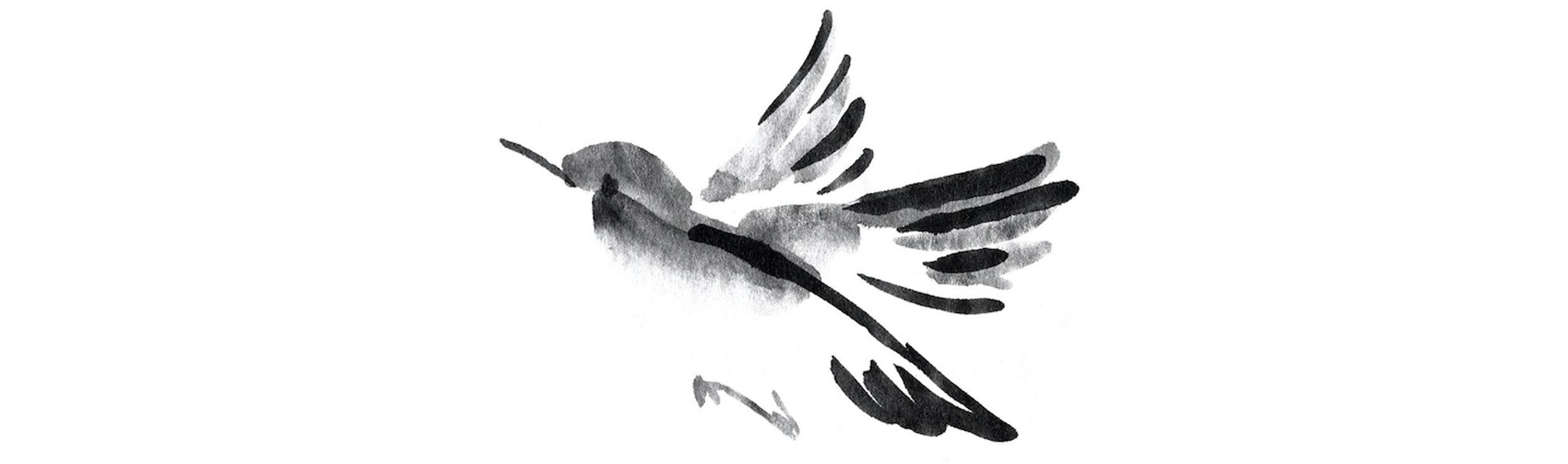 birds breaker4.jpg