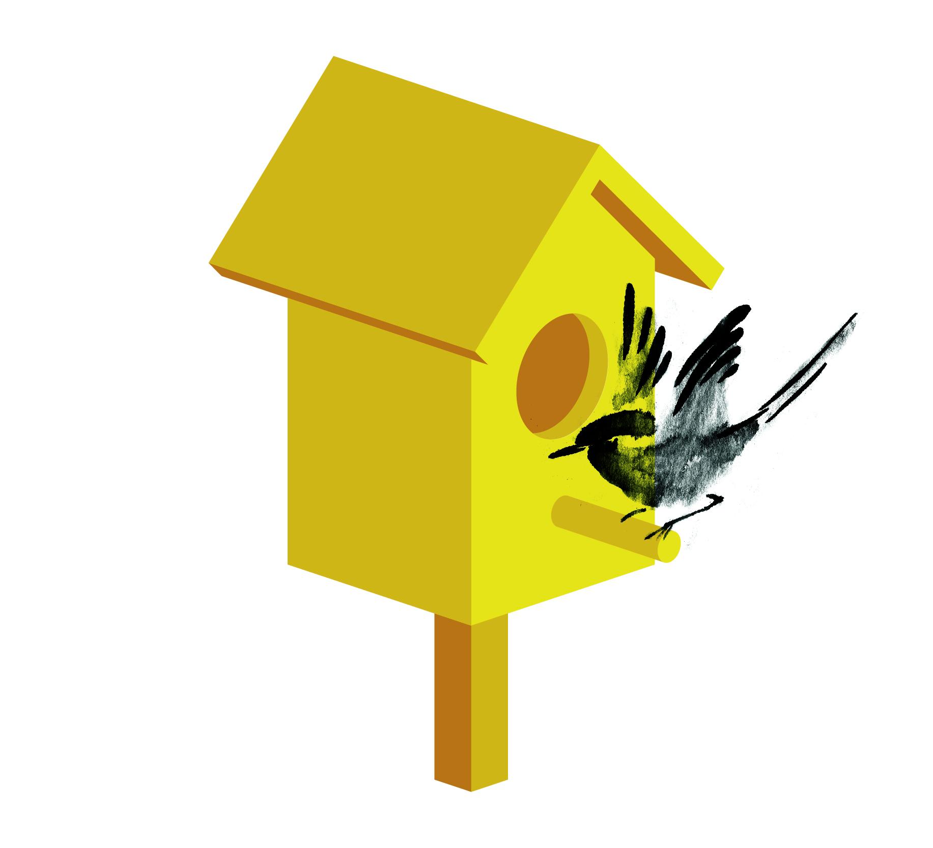 birdbox animation again-02.jpg