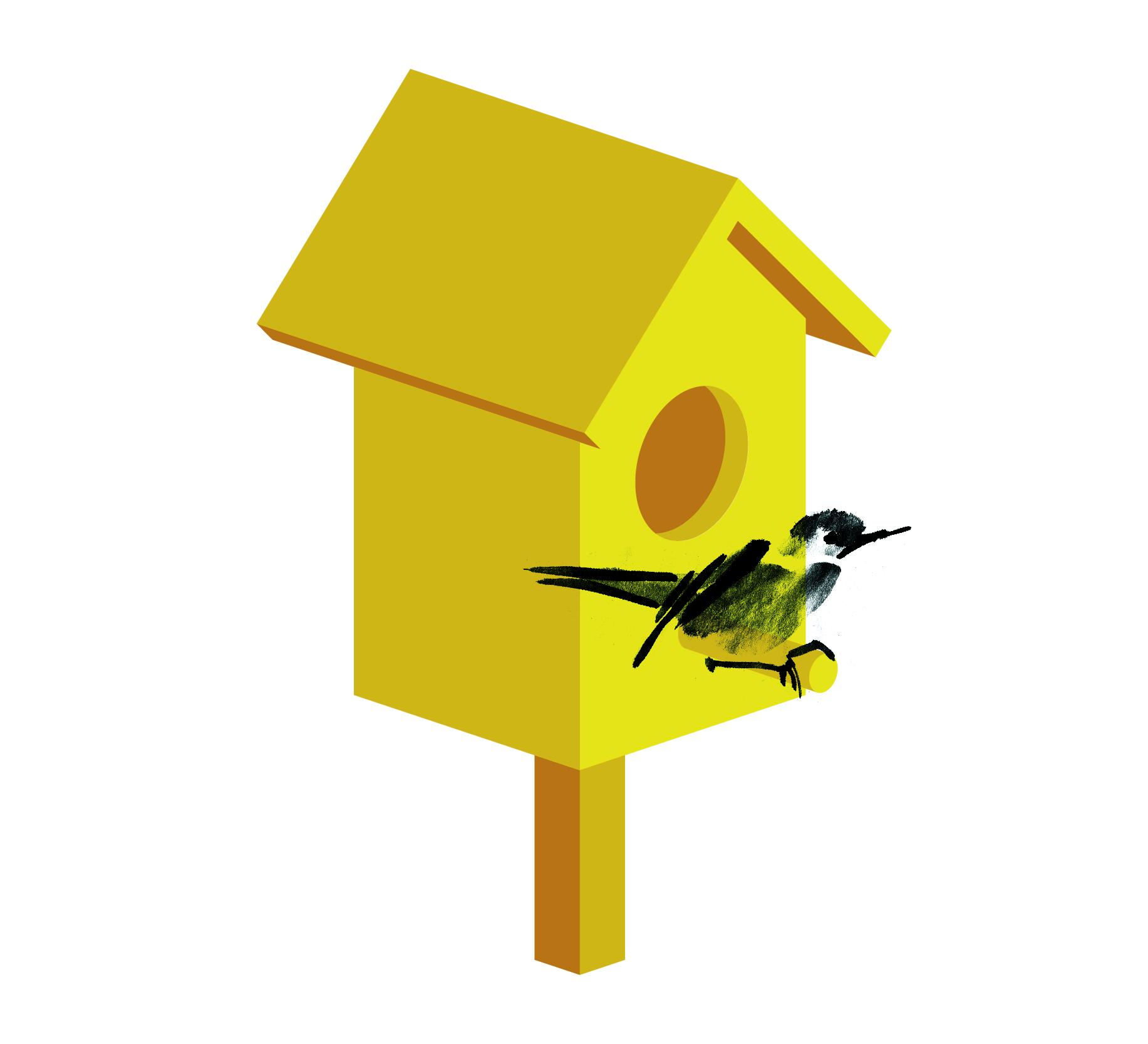 birdbox animation again-04.jpg