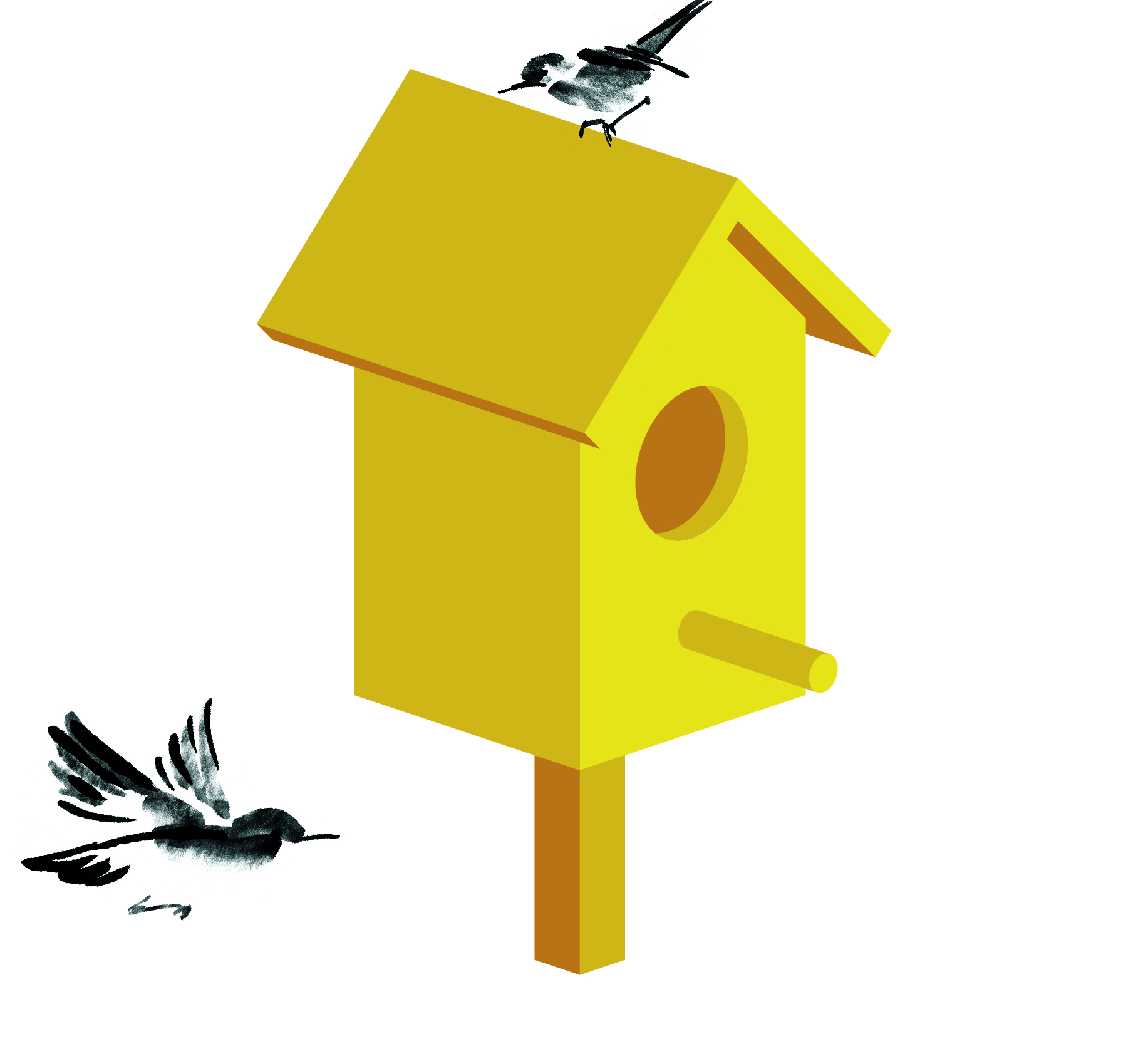 birdbox animation again-08.jpg