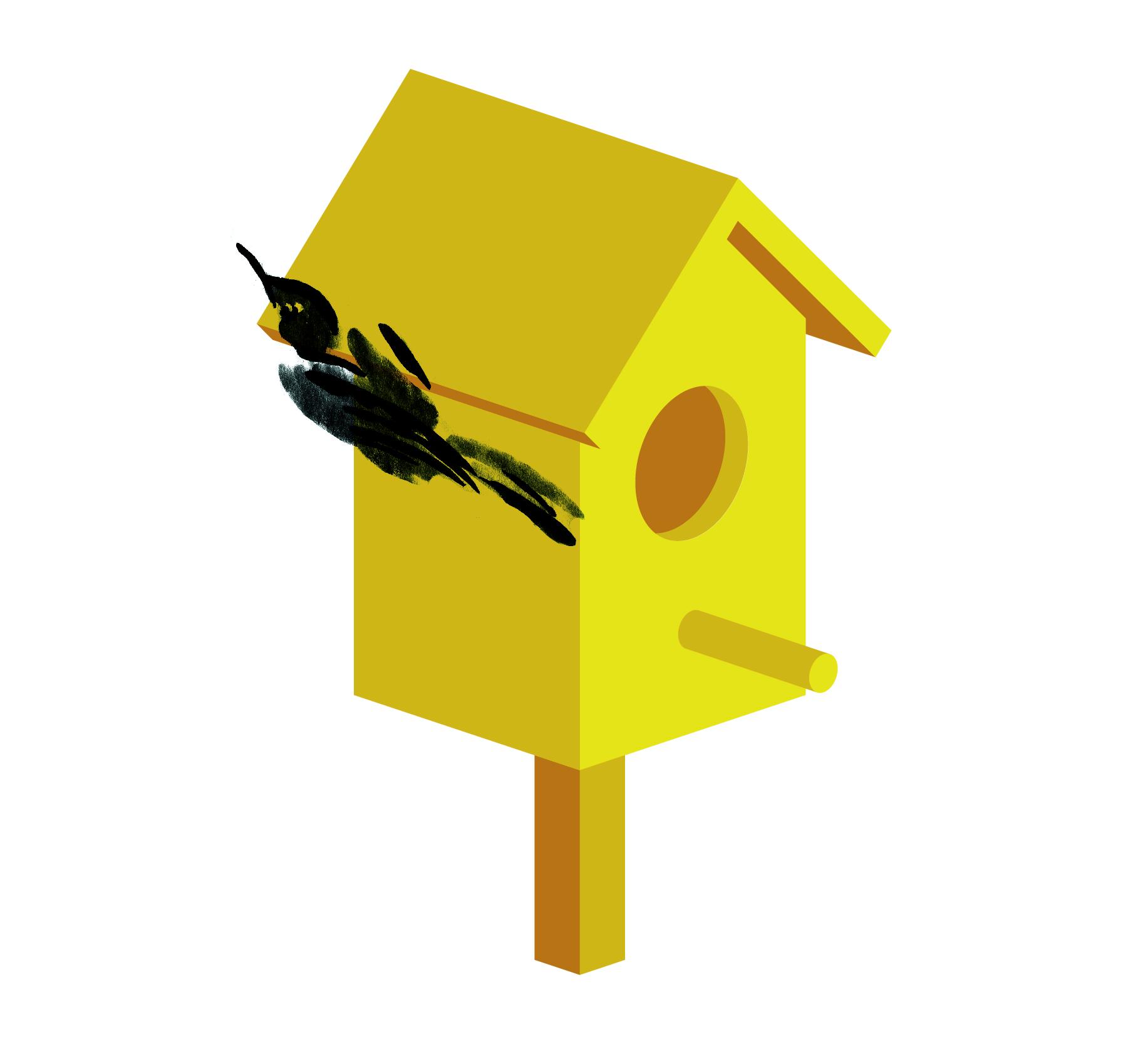 birdbox animation again-10.jpg
