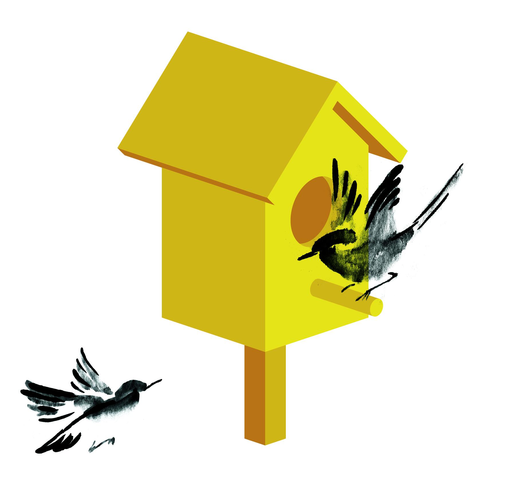 birdbox animation again-12.jpg
