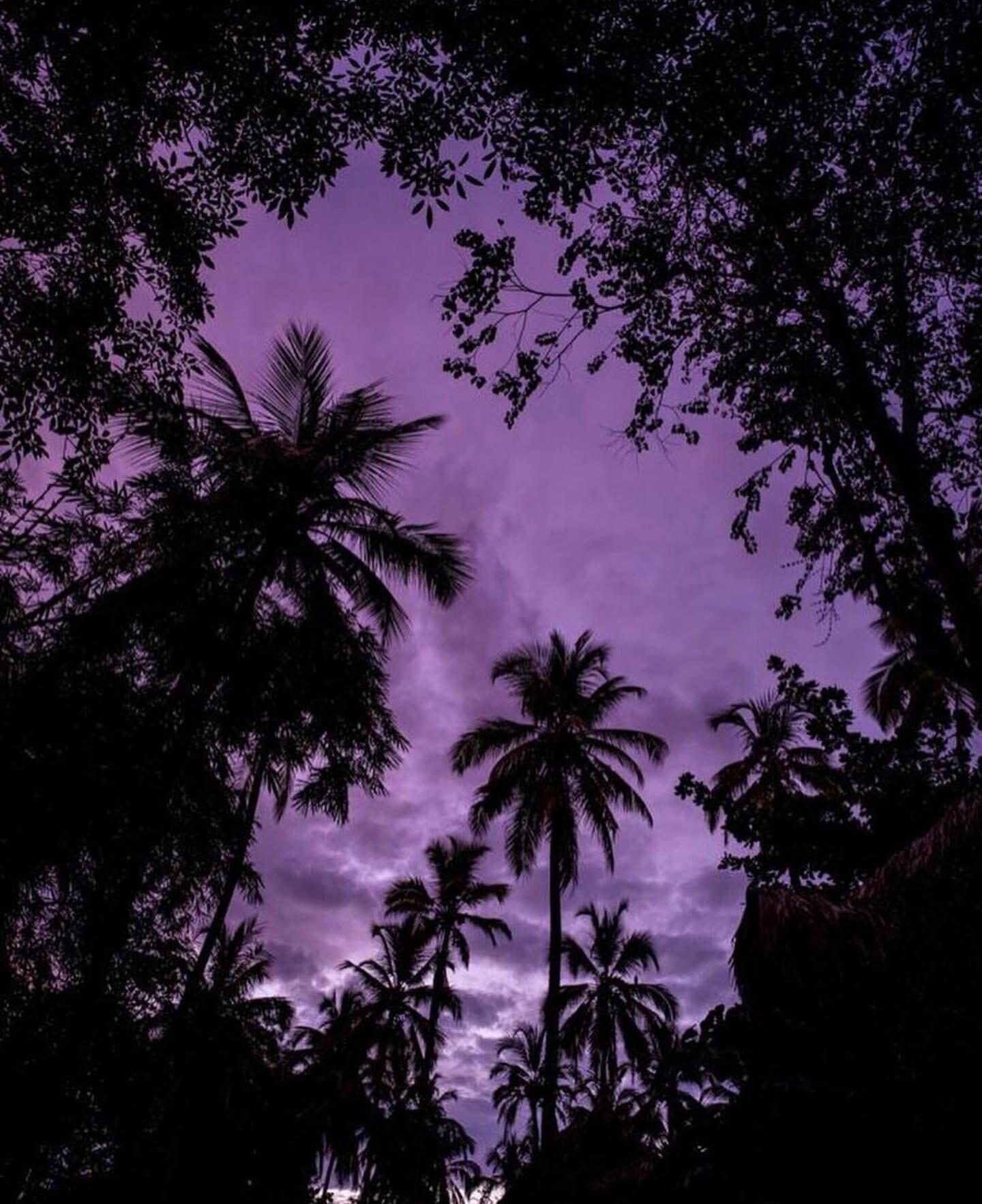 It's not what you look at that matters, it's what you see ✨ ~ Henry David Thoreau  . . 📸 @cristinawarner  #gitanadelmar #eveningdusk #tropicalskies #caribesutil #naturelovers #naturalparadise #corazondelmundo #sierranevadadesantamarta