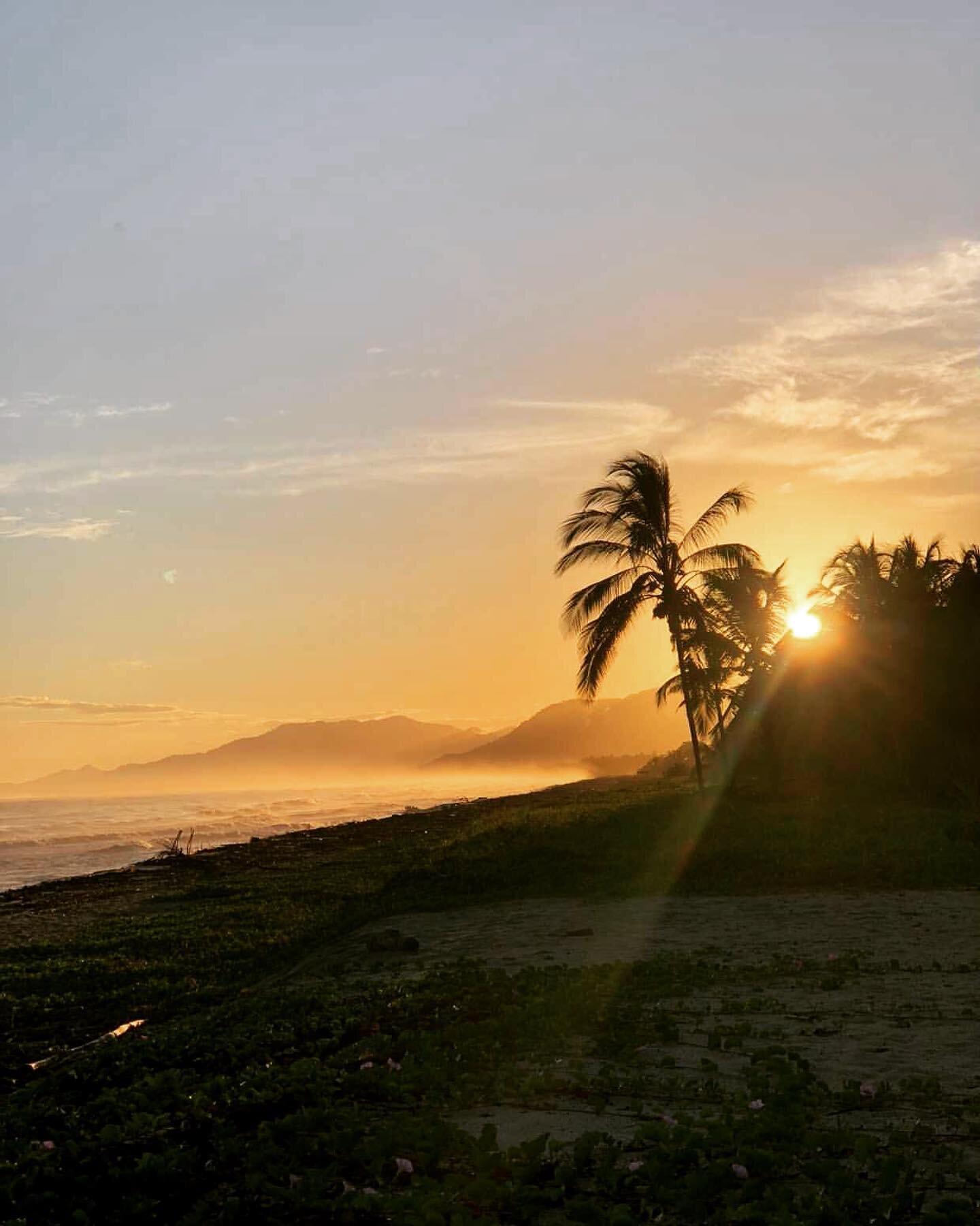 Amanecer con gratitud todos los días de la vida... gratitude is the best attitude everyday 💫 . . 📸 @andieriano  . . #gitanadelmar #naturehotel #beachfront #amanecer #sunrise #gratitudinfinita #blessedlife #sierranevadadesantamarta #colombia