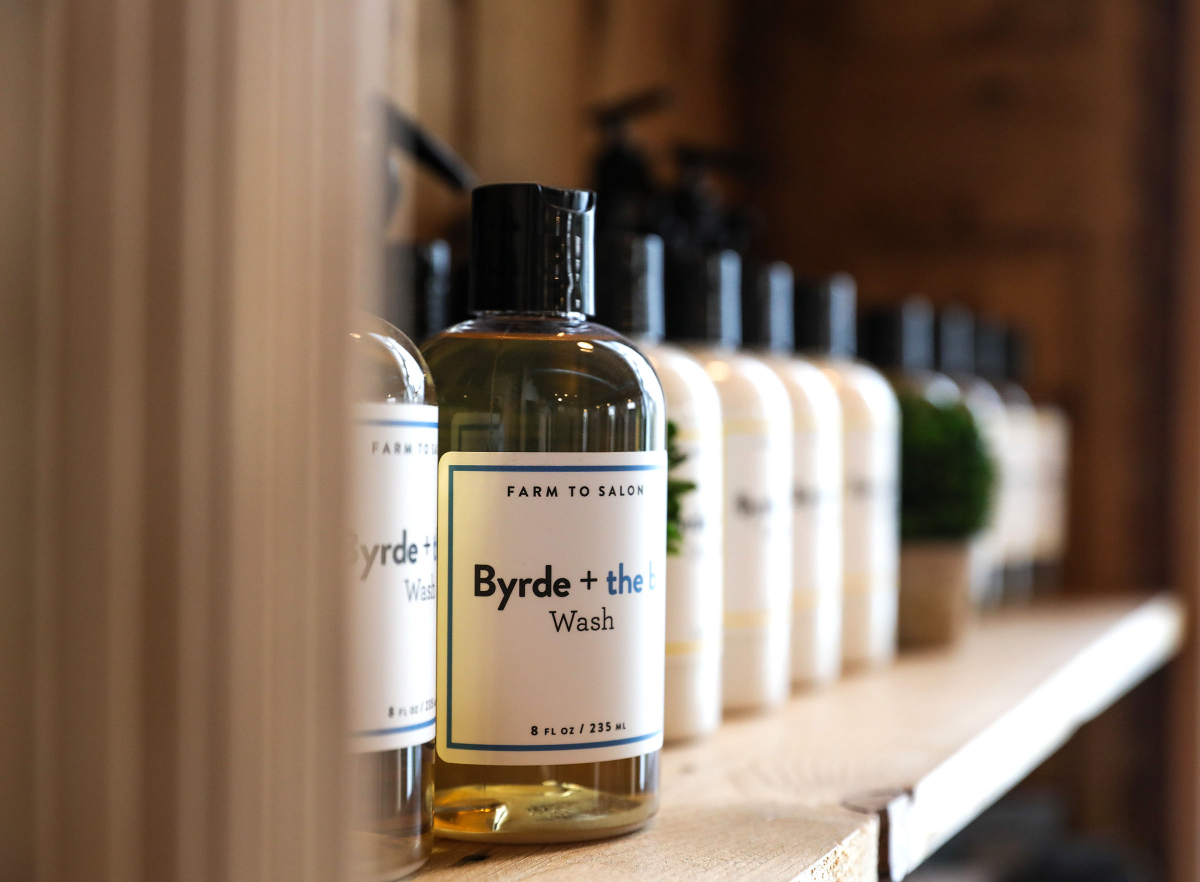bydreandtheb-body-wash.jpg