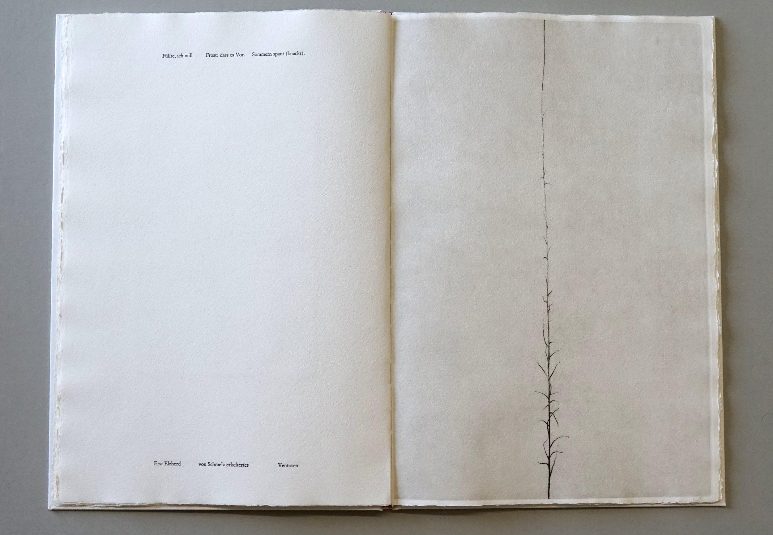 NICHTS VON DEM, WAS ICH GESEHEN HABE Four soft grounds and three etchings by CHRISTIANE LÖHR Unpublished poem by OSWALD EGGER , 2004 Artist Book 16 x 11 x 1/2 inches (40.6 x 27.9 x 1.3 cm) Wood case: 17 1/8 x 11 3/4 x 1 1/2 inches (43.5 x 29.8 x 3.8 cm) Edition : 47/50 Edizioni Canopo