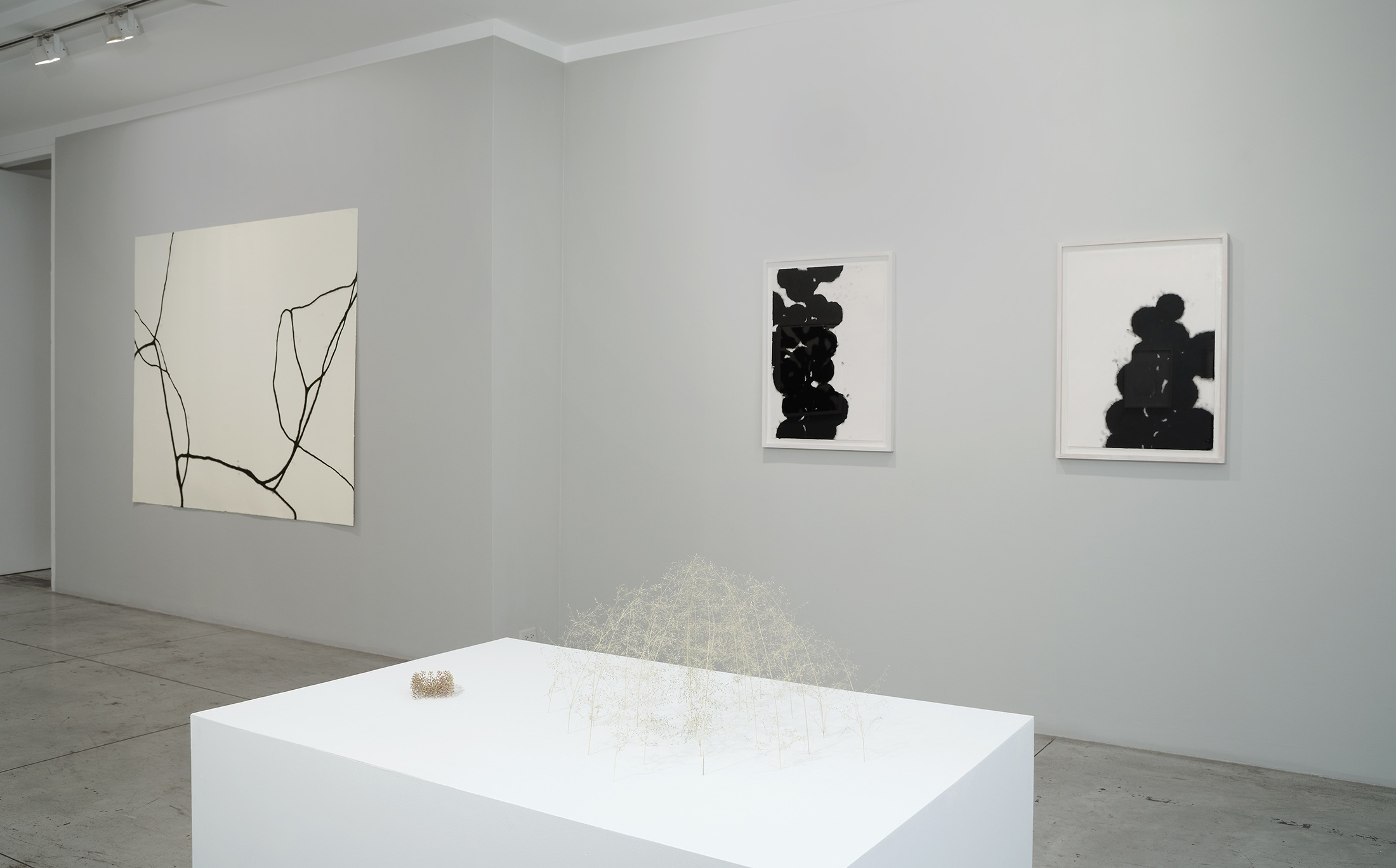 Christiane Löhr: diffuse , Installation view at Jason McCoy Gallery, 2018.