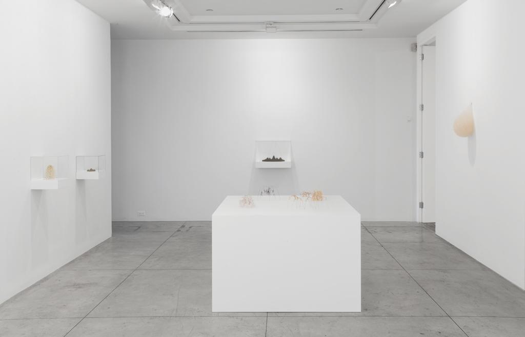 Christiane Löhr , Installation View at Jason McCoy Gallery, 2012.