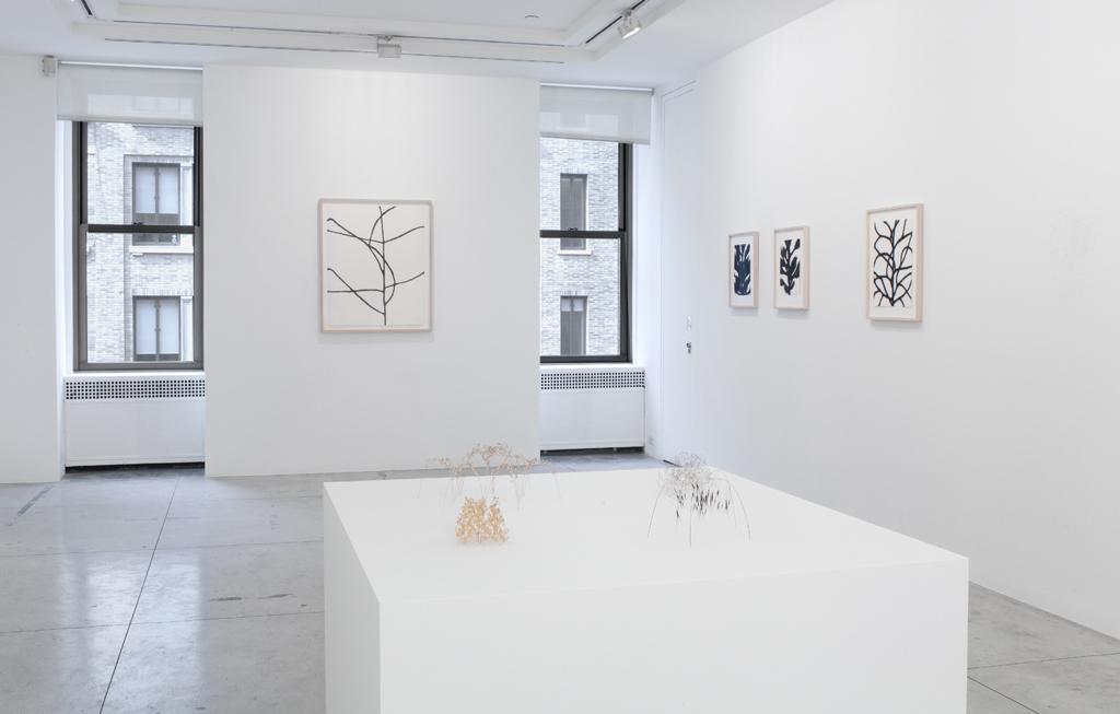 Christiane Löhr,  Installation view at Jason McCoy Gallery, 2012.