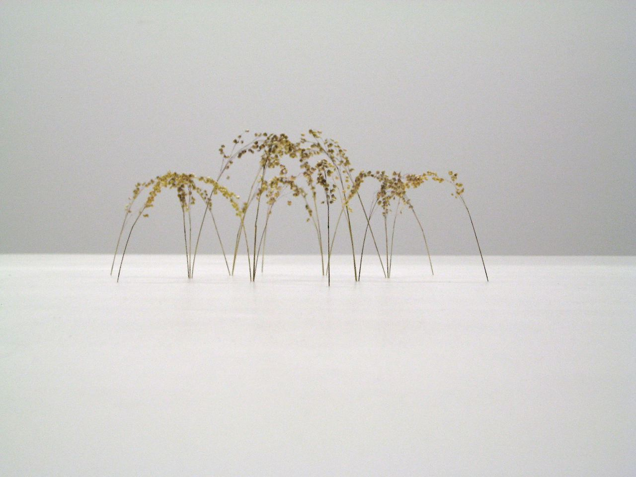 Christiane Löhr  (B. 1965)  Große Bogenform / Big Arch Form , 2011 Plant stalks 5 1/2 x 15 3/4 x 15 3/4 inches (14 x 40 x 40 cm)