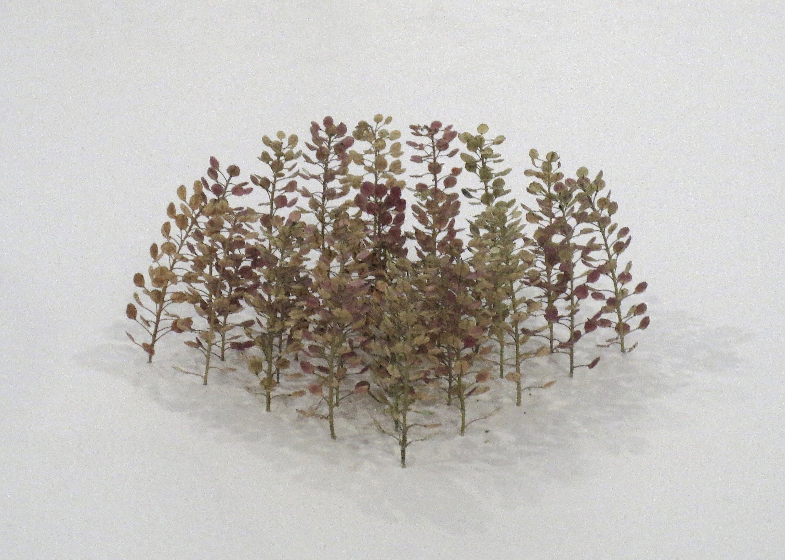 Christiane Löhr  (B. 1965)  Concave Form/Cube [Konkave Form/Quadrat] , 2018 Plant stalks 13 3/4 x 3 1/8 x 3 1/8 inches 3,5 x 8 x 8 cm