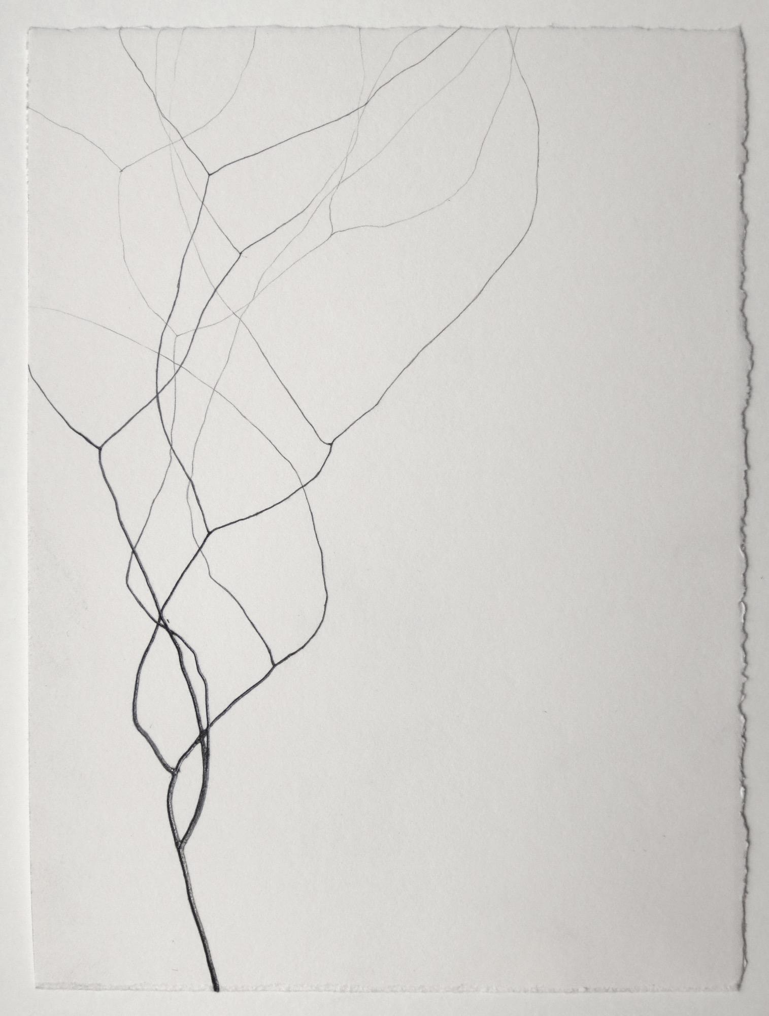Christiane Löhr    Untitled , 2018 Graphite on paper 10 1/2 x 8 inches  27 x 20 cm