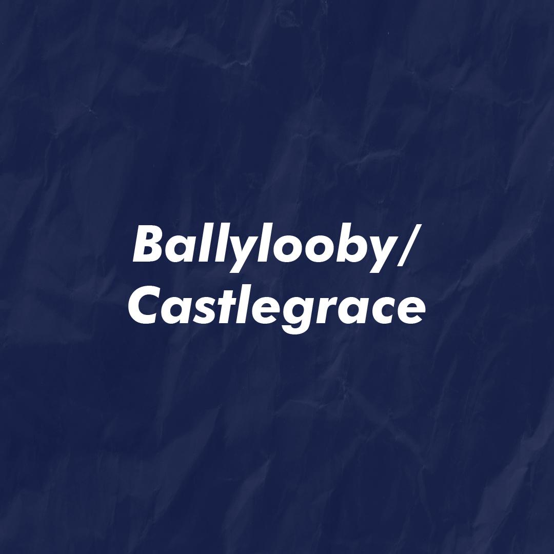 BallyloobyCastlegrace-100.jpg