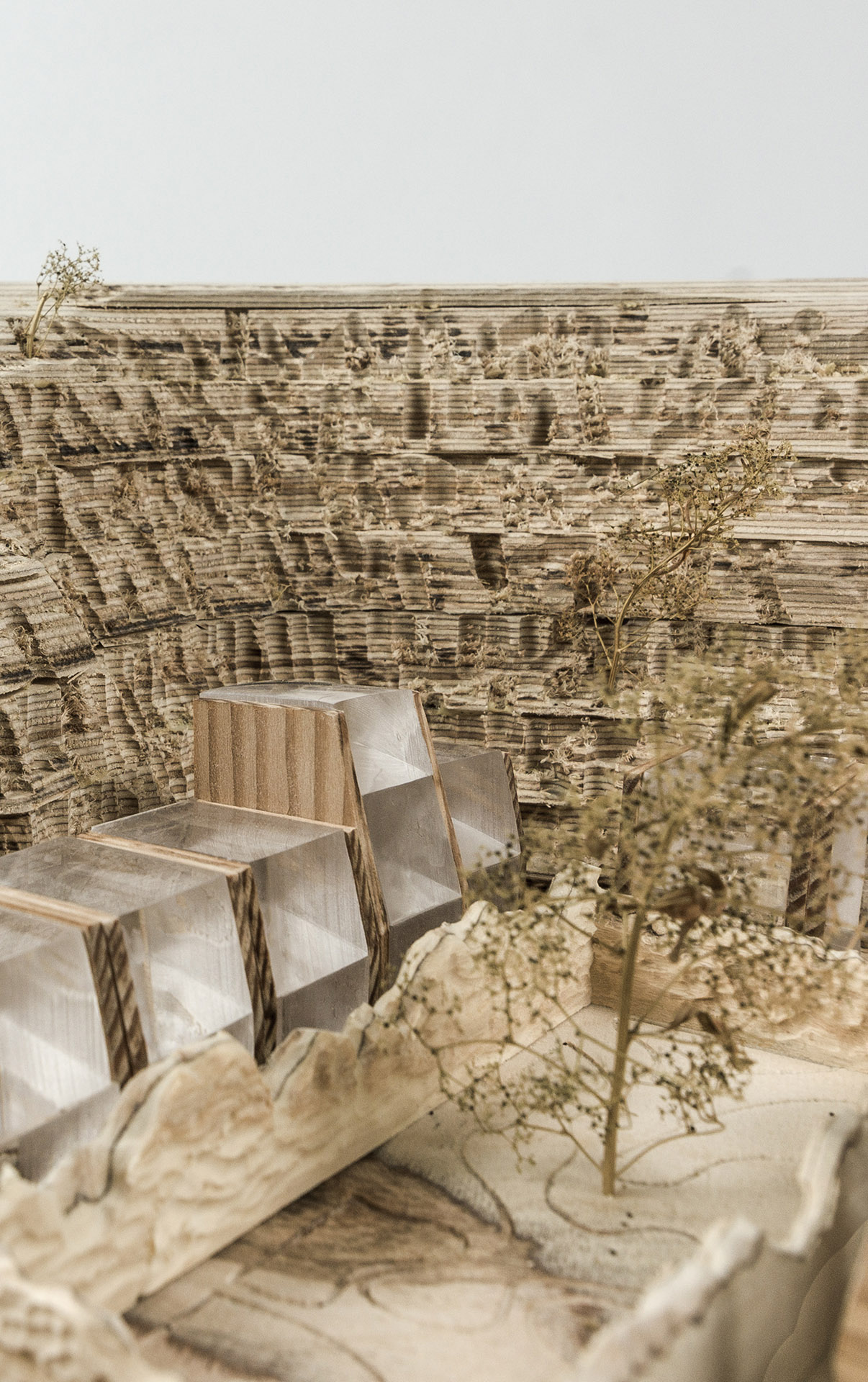 The lodges  Carefully positioned glazing captures light reaching the bottom of the quarry. The structural flank walls provide thermal mass and support the light-weight habitable rooms.