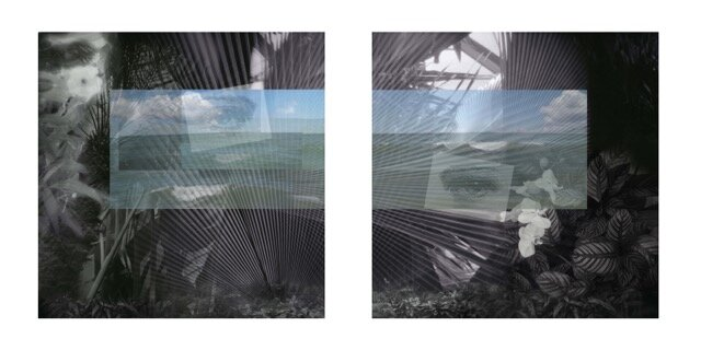 """""""The Gaze Is Not Neutral/The Landscape Is Not Mute"""", 44""""x44"""" (each), Photography/Mixed Media, 2019"""