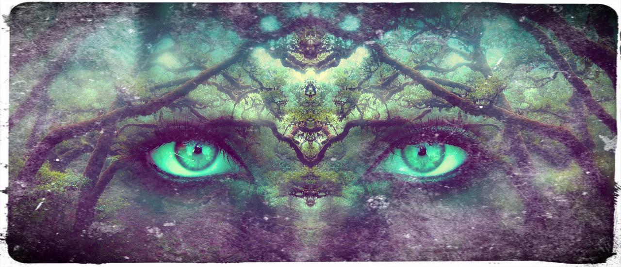 - Erwache mit Morgan le Fay in deiner mystischen Weiblichkeit.Tauche tief in die Kraft von Mutter Erde. Dem Mond. Und öffne die Nebel zur mystischen Welt Avalons. Das Tor zur Anderswelt, wo deine Seele auf dich wartet.