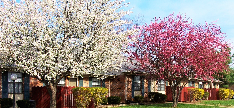 stones-river-apartments-murfreesboro-tn-primary-photo.jpg
