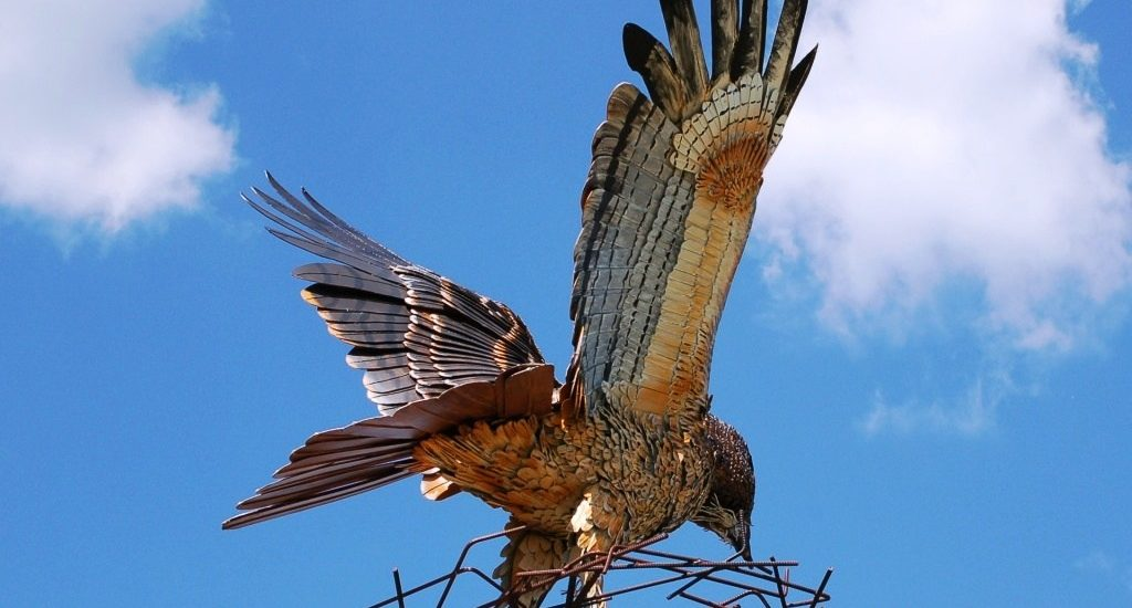Lancaster Flight of the Hawk- Photo credit Fairfield County Parks website.jpg