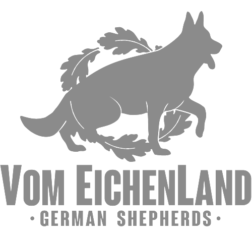 Vom+Eichenland+LOGO+by+vojinstudio+final+001grey.png
