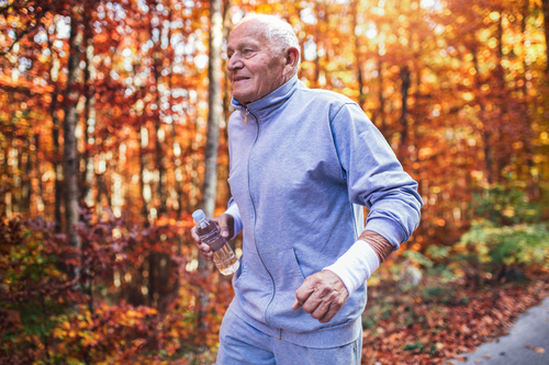 Senior runner in nature. Elderly sporty man running in forest du Senior runner in nature. Elderly sporty man running in forest during morning workout. Healthy and active lifestyle at any age concept