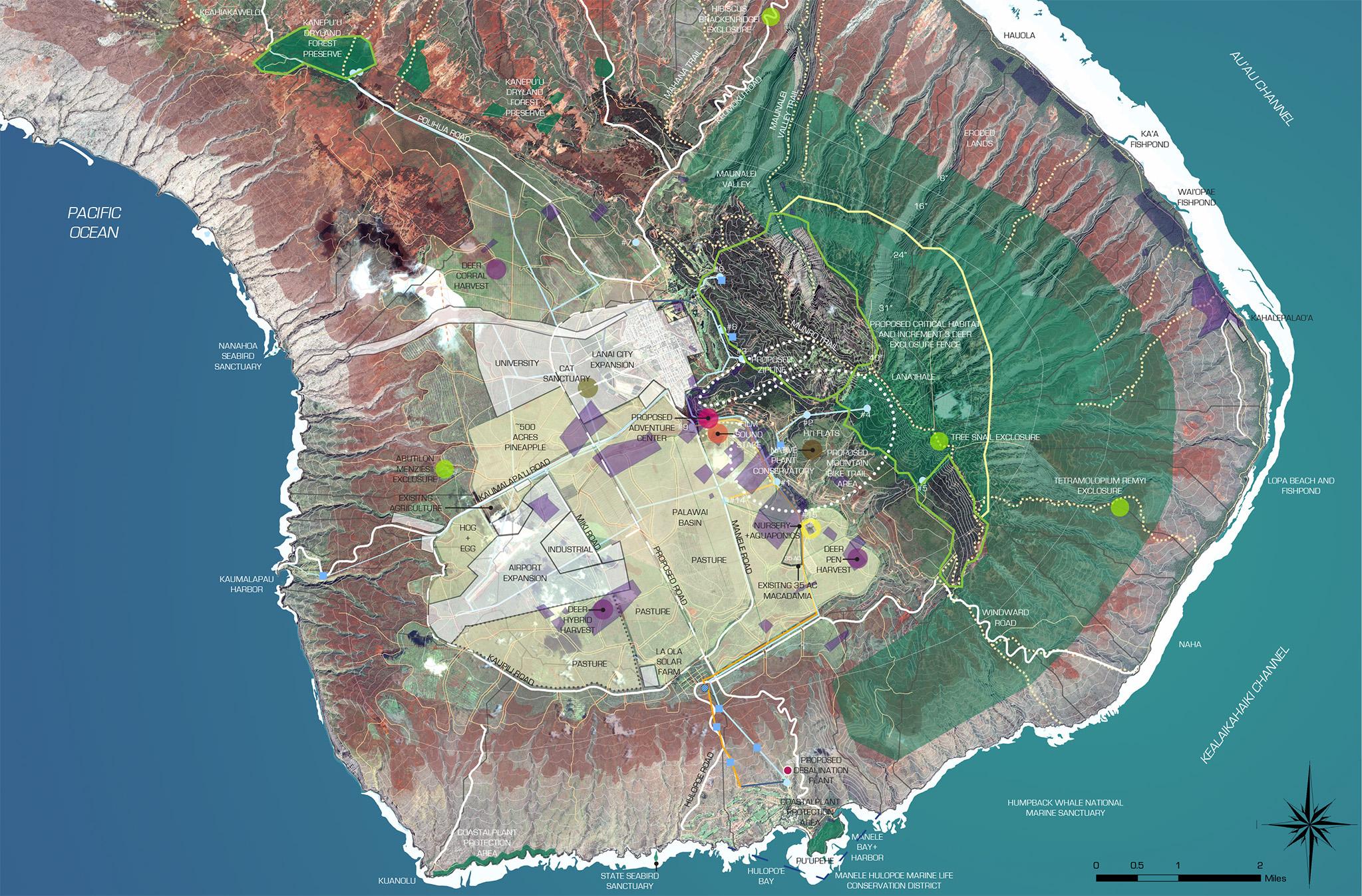 PALAWAI+MAP+8x10+10-31-13.jpg