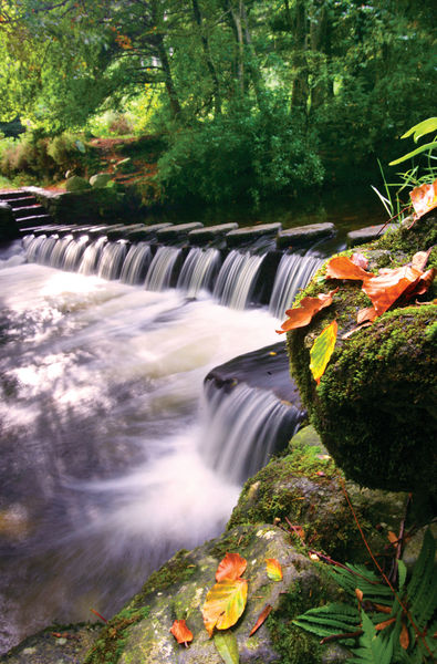 PIC-Tollymore Park (3).jpg