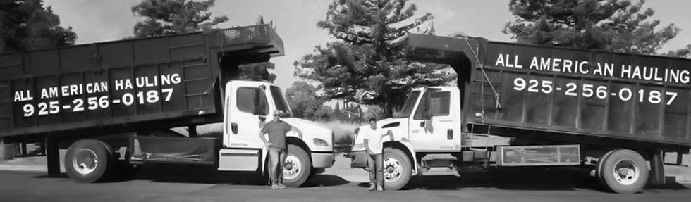 Hauling_Company_Trucks_New.jpg