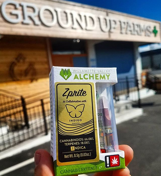 So stoked that this Zprite Liquid Live Resin cartridge collab between two of our favorites- @indigo.gardens and @willamette_valley_alchemy - finally made it to our shelves! Refreshing yet delectable with 18.08% terpenes, this is the perfect complement to long lazy summer afternoons. 🍋☀️🍈 . It's also a great birthday present to us! @indigo.gardens is helping us celebrate our 🎉First Cannaversary THIS SATURDAY🎉, so come say hi to @glazed_and_infused while your munch on some free food, enter raffles for gear, tickets to @highsiskiyoutours and more! . . • Over 21 only • Nothing for sale on Instagram • Consume responsibly • . . #groundupfarms #livegroundup #groundupcomingevents #zprite #cartridges #liquidliveresin #liveresin #terpenes #terpythursday #collab #willamettevalleyalchemy #indigogardens #farmtopocket #anniversaryparty #cannaversary  #firstanniversary #partytime #vendorday #demoday #craftcannabis  #oregongrown #oregoncannabis #smokelocal #growlocal #southernoregon #medfordoregon #medford #budtender #liveloud #enjoylife