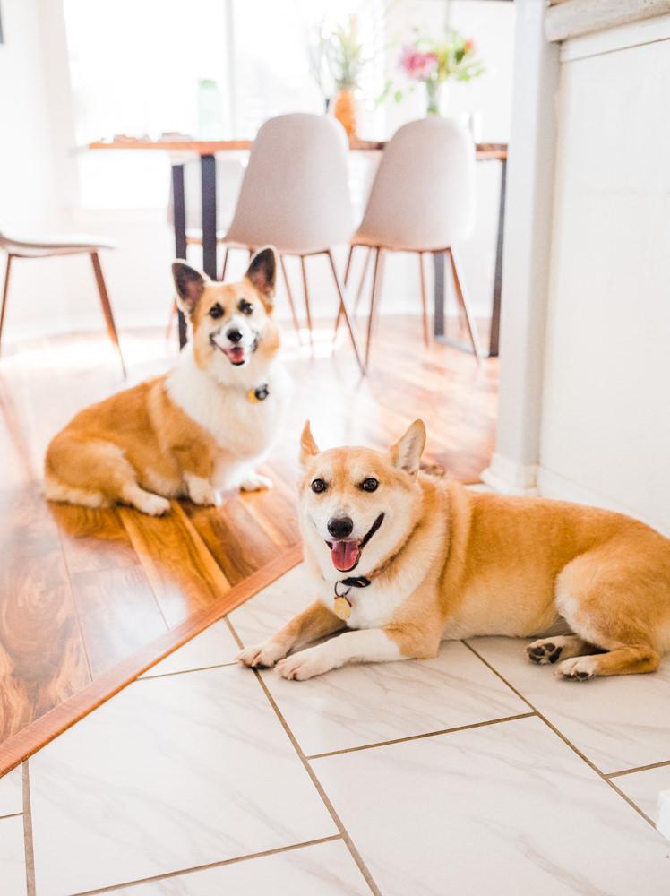 in-home-branding-couples-session-waikoloa-7.jpg