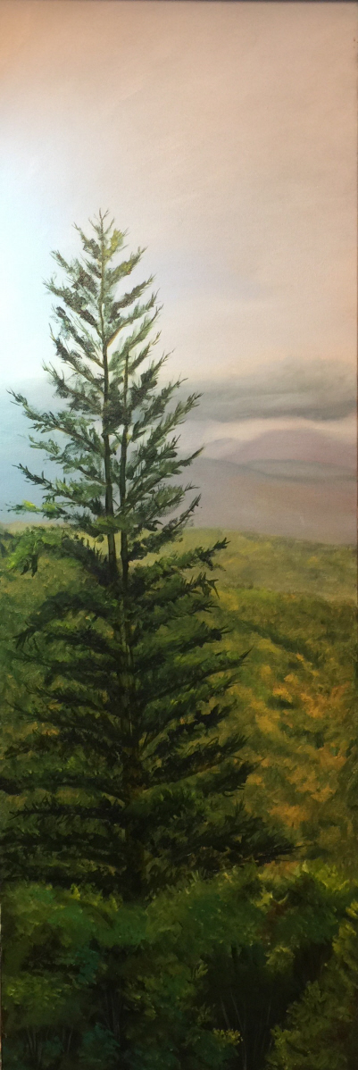 Lone Pine  Oil on Canvas 12x36