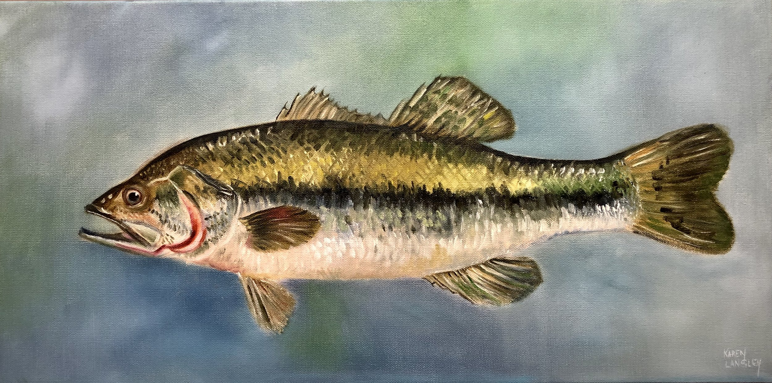 Large Mouth Bass  Oil on Gallery Wrapped Canvas 12x24