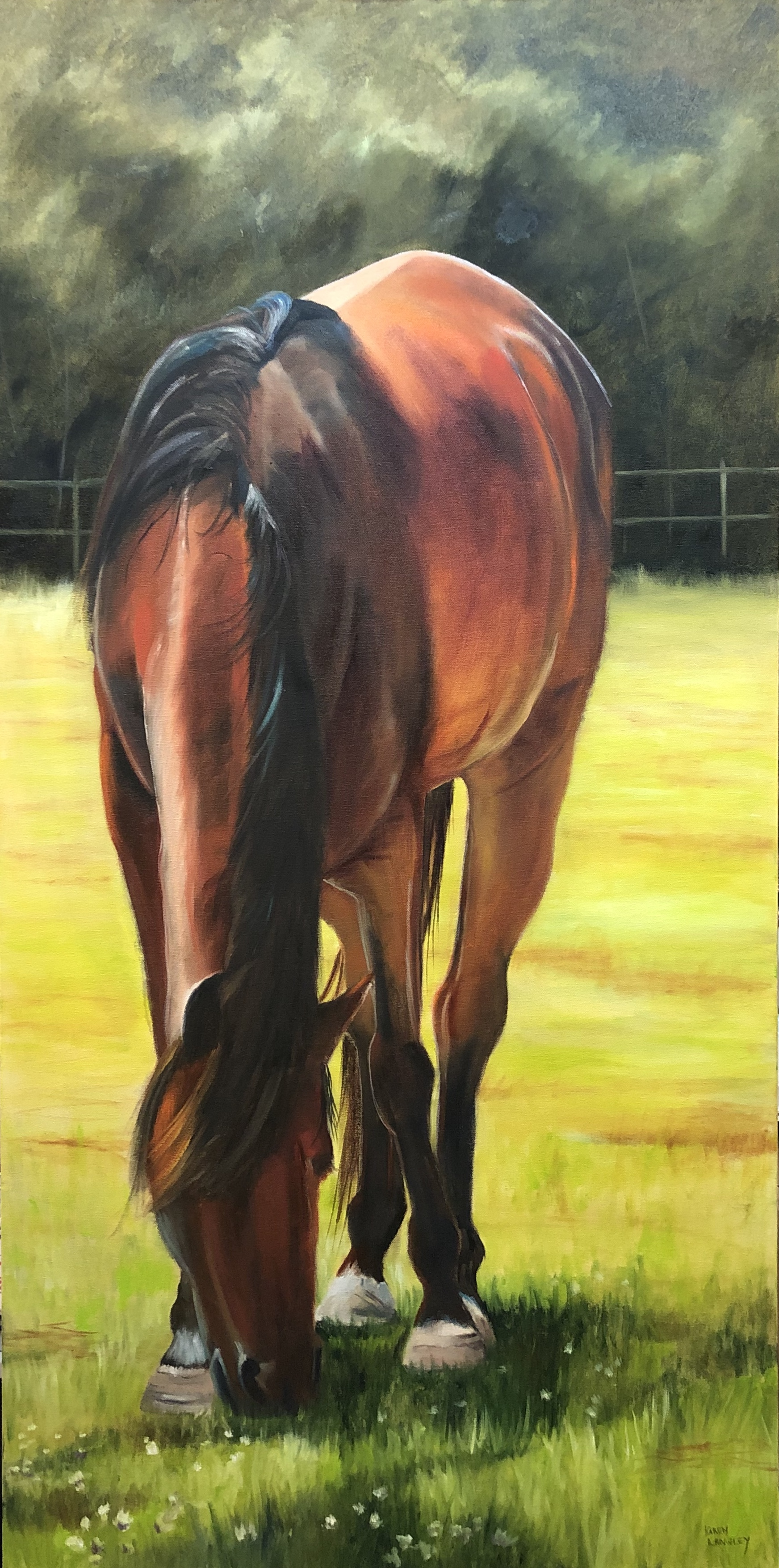 Grazing  Oil on Gallery Wrapped Canvas 24x48