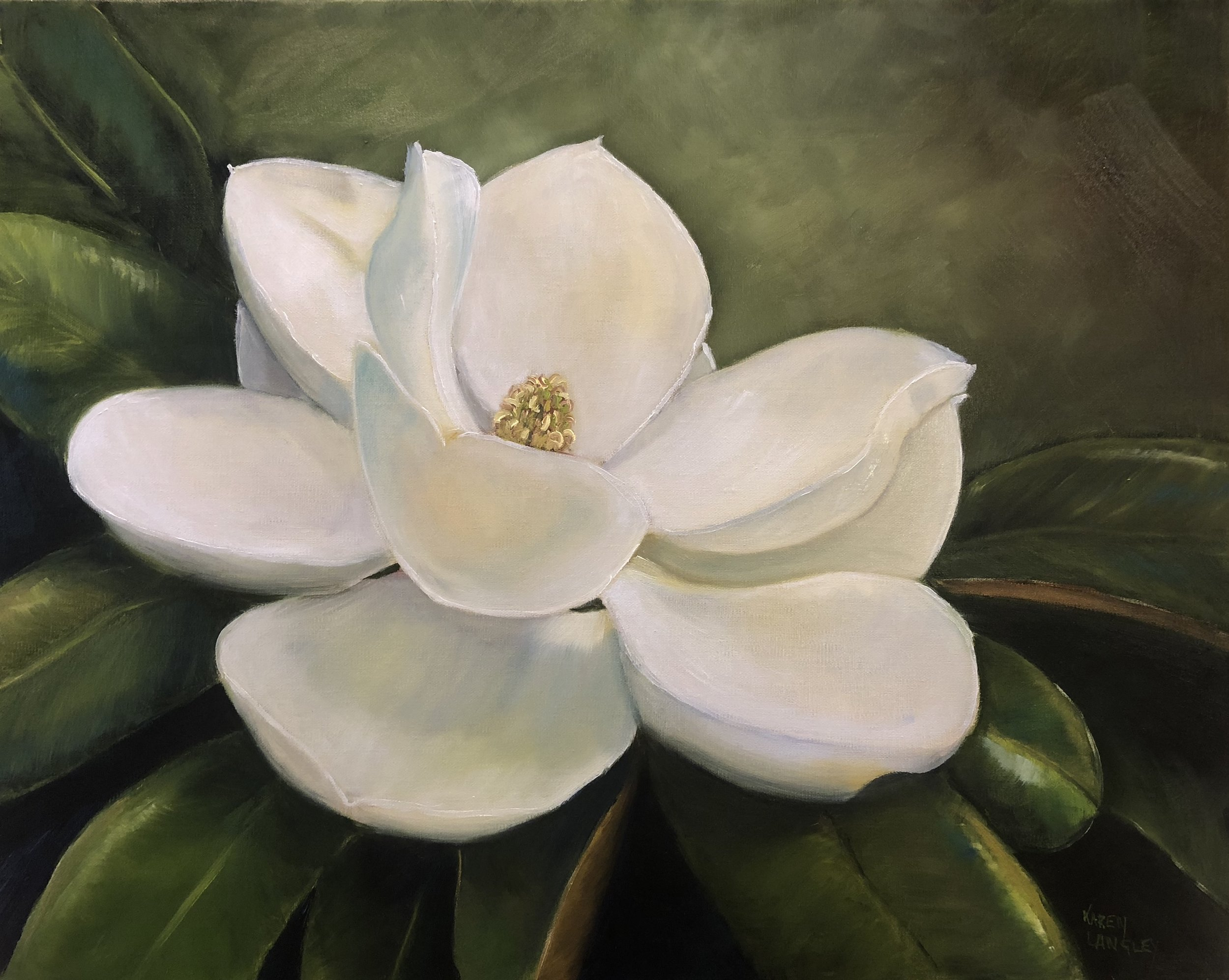 Magnolia  Oil on Linen 16x20