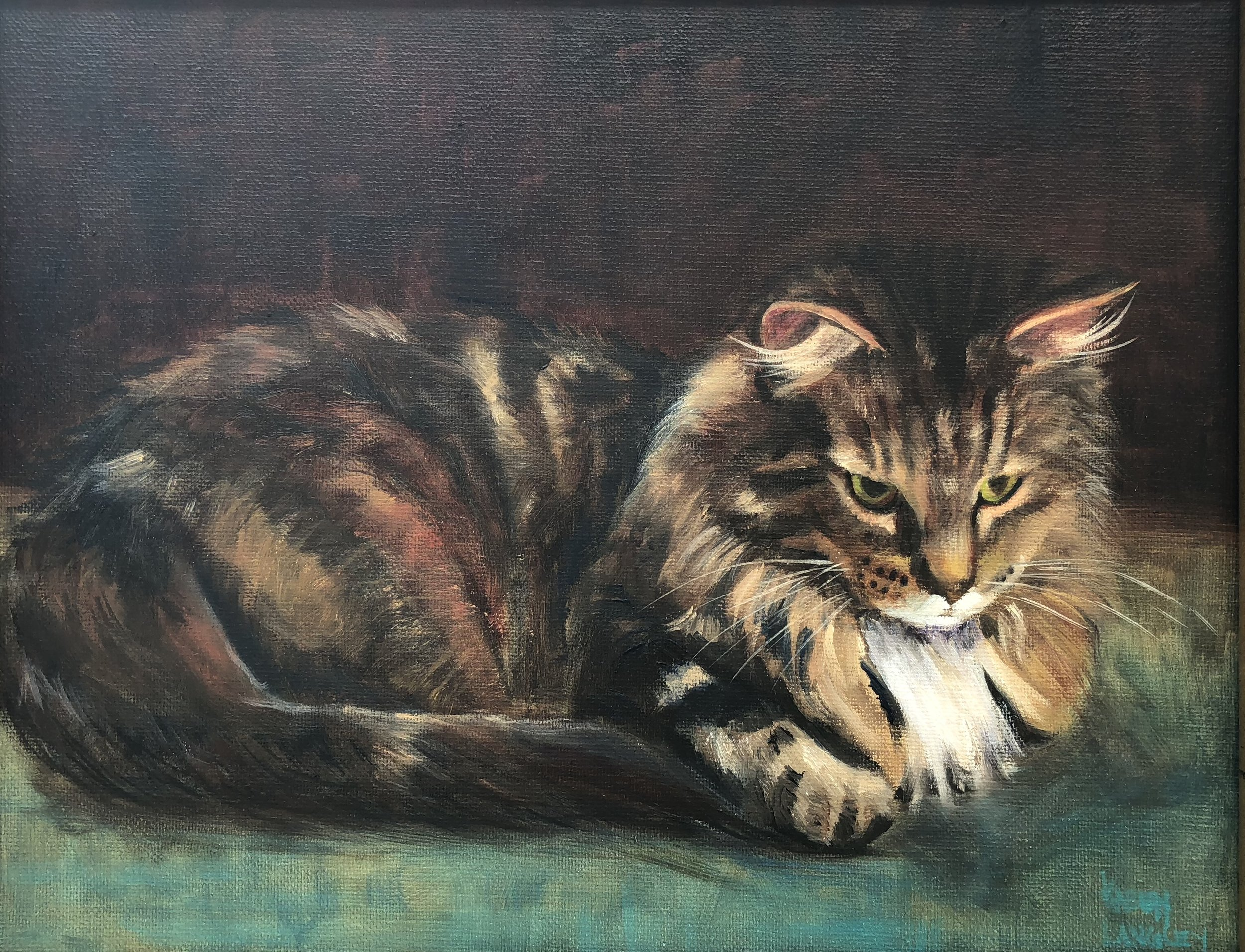 Daydreaming Tabby  Oil on Linen 11x14