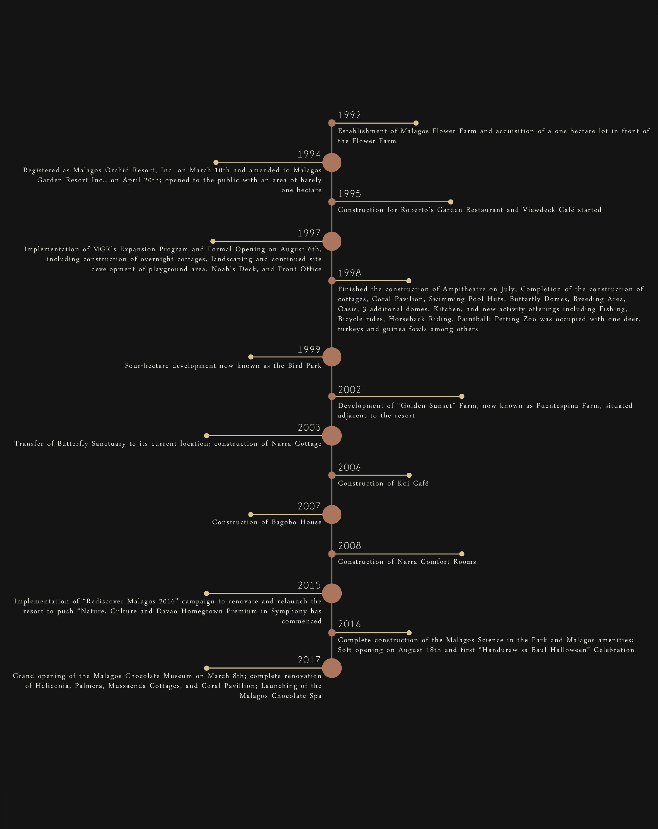 MGR Story Timeline VectoR-01-01.jpg