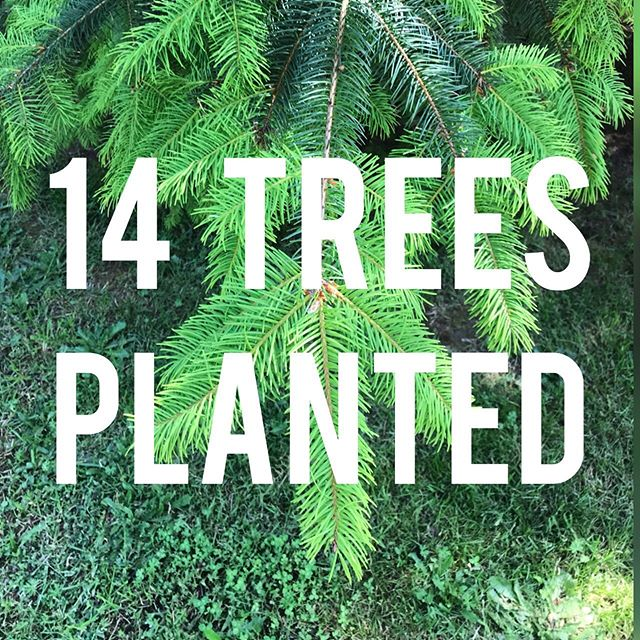 We're planting a tree for everyone who books with us for each retreat.  From our Vin-Yin retreat, 14 trees were planted in Oregon! 🌲🌲🌲🌲🌲🌲🌲 🌲🌲🌲🌲🌲🌲🌲 Join us August 2-4 in Banks, OR and we'll plant a tree for you! Book now at the link in our bio. 🌲🌲🌲 🌲🌲🌲 #plantatree #sustainability #plantingtrees #giveback #discoveroregon #yogaretreat #yogaadventure #practiceinnature #bethechange #pnw #pnwonderland #pdxyogascene #yogainpdx #pnwyoga #changemakers #ecoretreat #ecoyogi #ecofriendly #roamresponsibly #namaste
