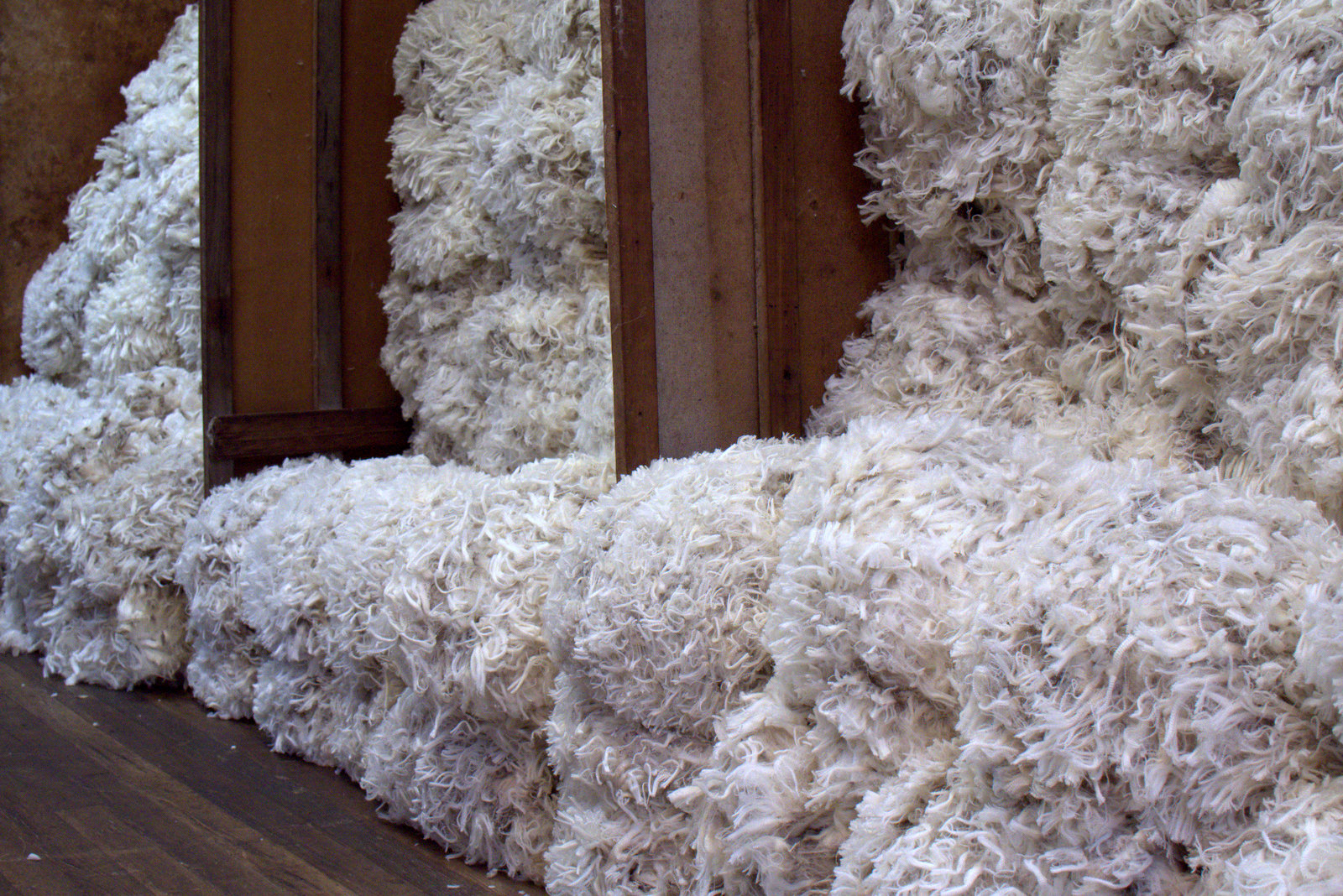 106-DSC_7562full-wool-bin-wrn-shearing.jpg
