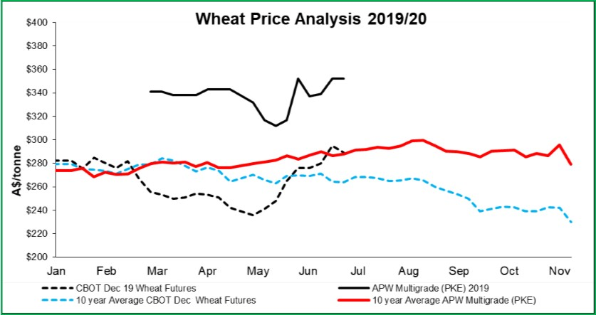 Wheat-July-2019.jpg