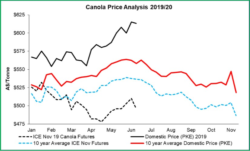 Canola-July-2019.jpg