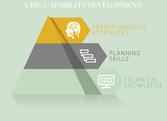CAPABILITY DEVELOPMENT PYRAMID.png