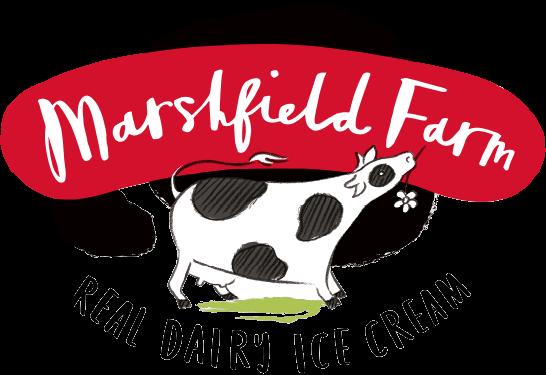 marshfield logo.png