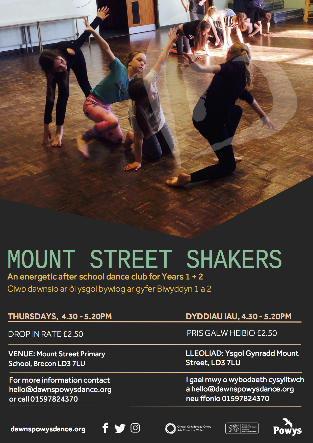 Mount Street Shakers 2017.jpg