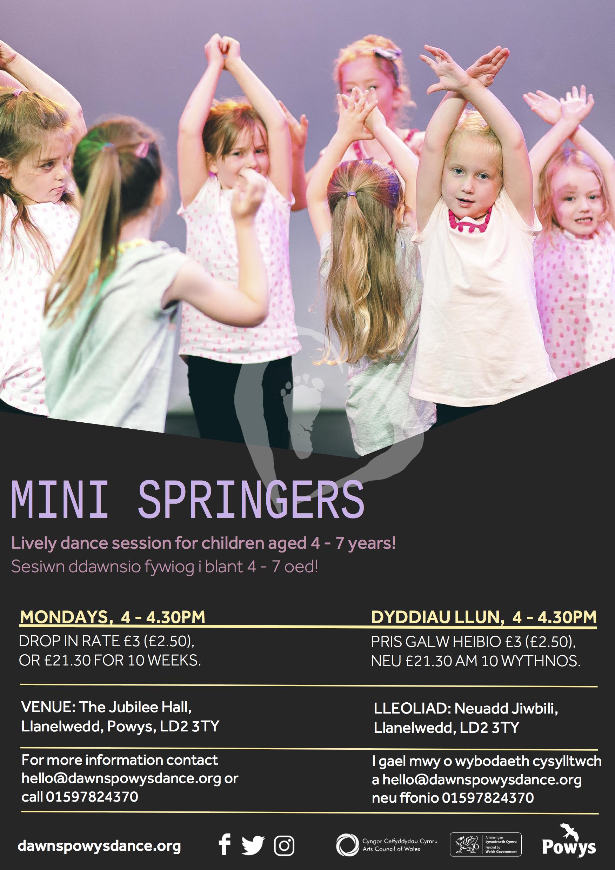 Mini Springers 2017.jpg