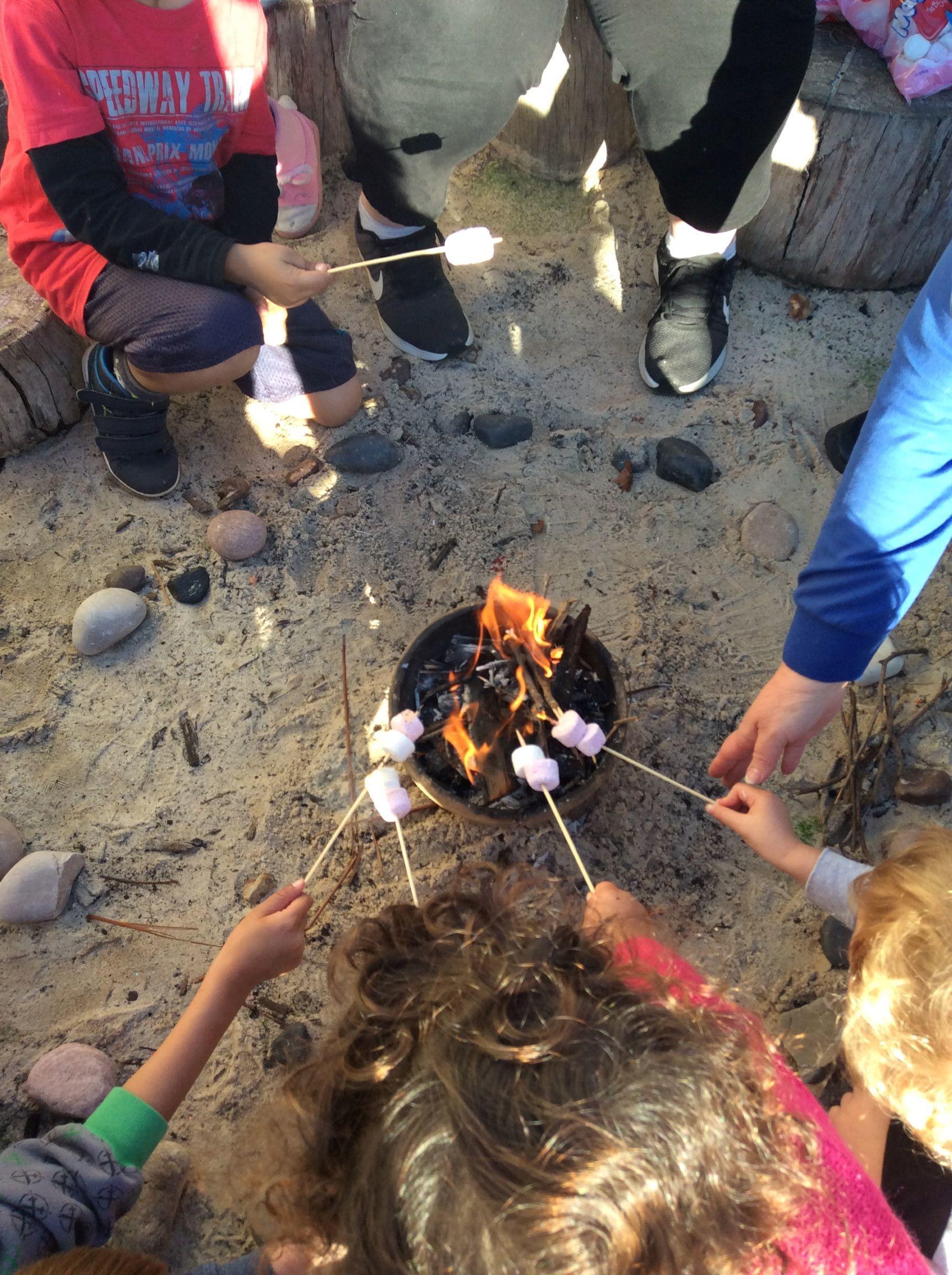 fire marshmallows.JPG